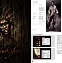 Blood Ghost Film Business Plan
