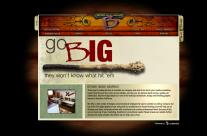 Beyond Image Graphics Website